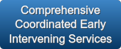 Comprehensive Coordinated Early Intervening Services